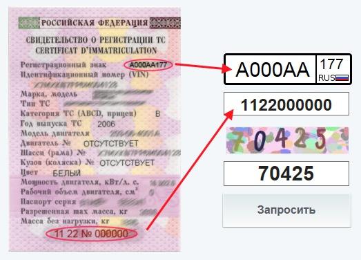 где найти номер свидетельства о регистрации