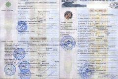 Наказание за езду на незарегистрированном автомобиле